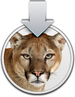 Mountain lion requirements boot camp