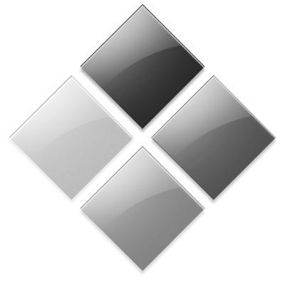 לוגו בוטקאמפ