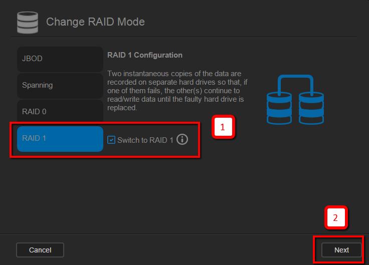 בחירת סוג raid1